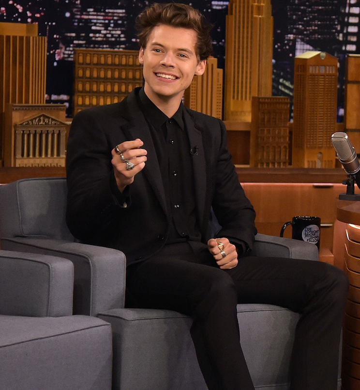 Harry Styles on turning down The Little Mermaid